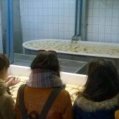 Zdjecia zrobione podczas wizyty w Spółdzielni Mleczarskiej w Gminie Lisewo
