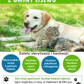 Plakat informacyjny dotyczacy dofinansowania na rzecz sterelizacji i kastracji psów i kotów