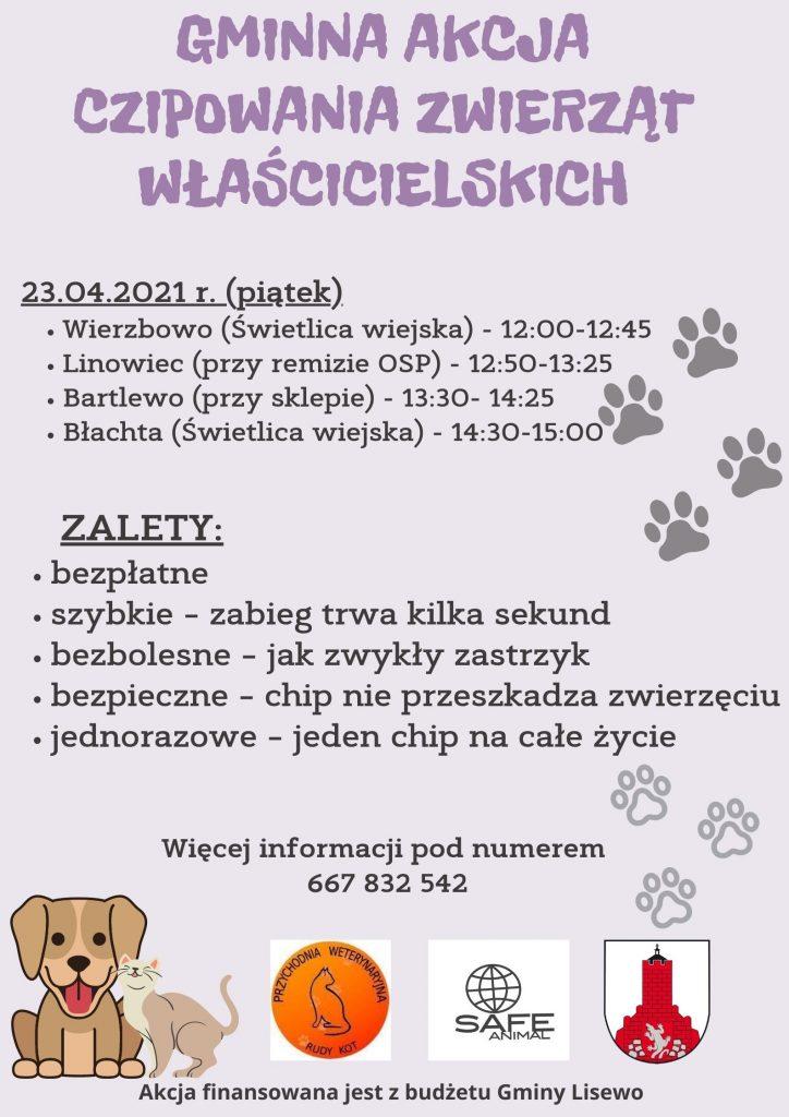Plakat - akcja czipowania zwierząt
